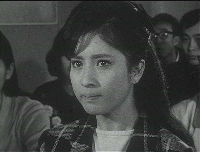 昭和の名作ライブラリー 第24集 ...