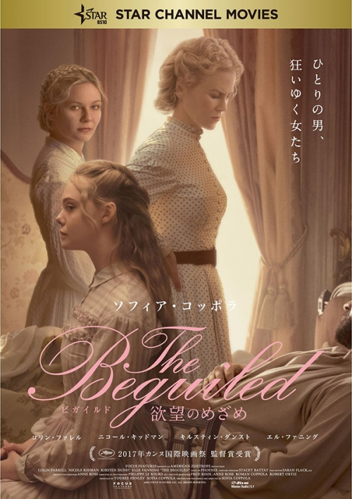 The Beguiled ビガイルド 欲望のめざめ Blu-ray